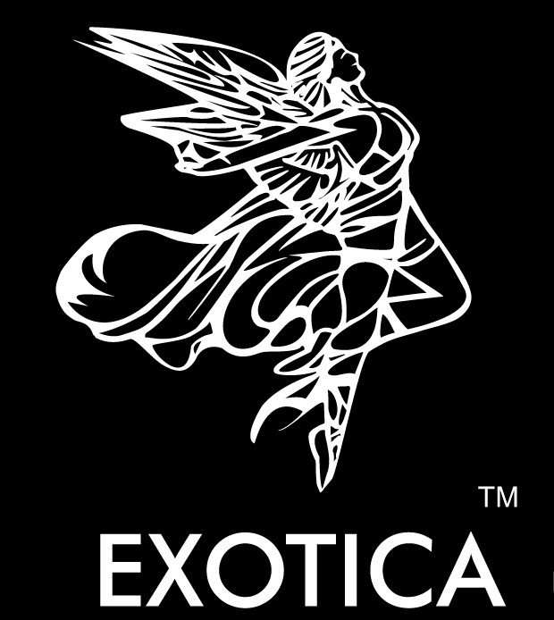 Exotica leathers - Car seat cover Dealers & Manufacturers in Bangalore